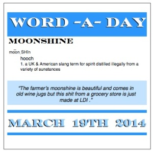 word a day moonshine
