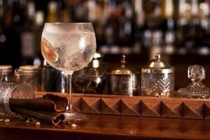 Gin Tonic at Bobby Gin in Barcelona